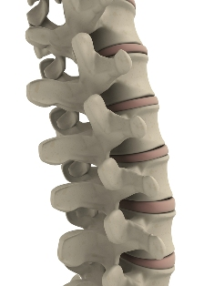 chiropractic adjustments includes sports medicine and rehabilitation